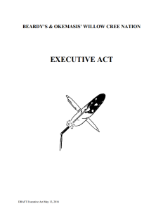 Click to view the DRAFT Executive Act.